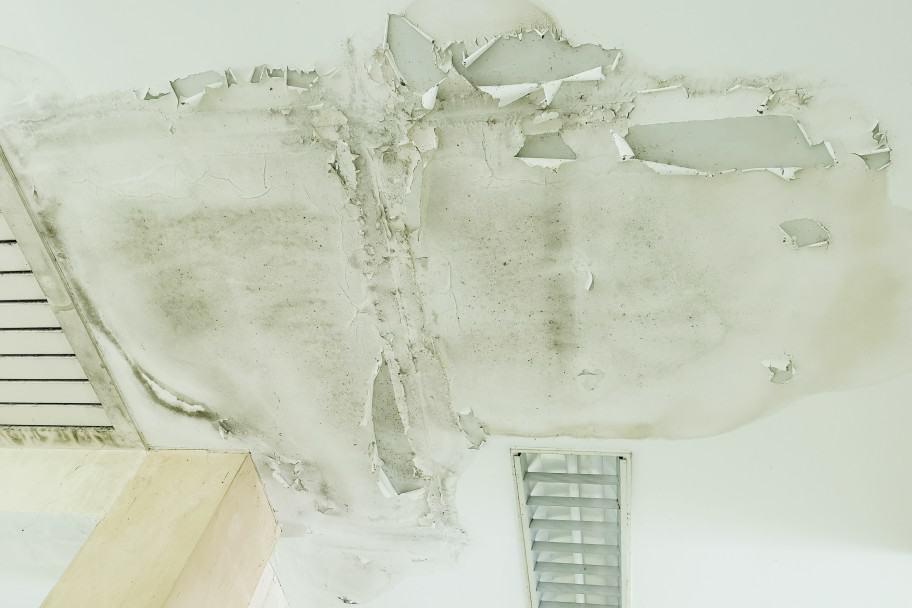 Roofing Repair Issue - Roof Leak