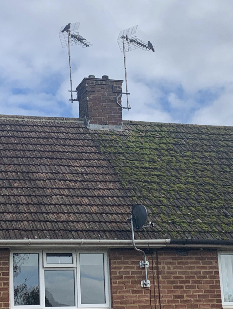 Roof Cleaning Northampton - By LD Roofing Services Ltd
