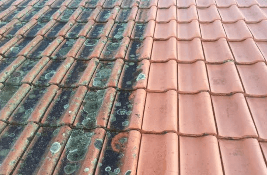 Importance of roof cleaning. Source: Bricksandagents.com