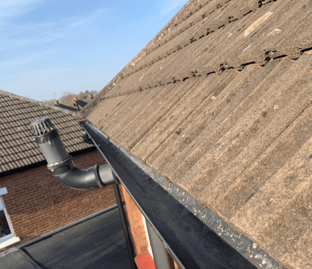 Removing mold and algae from your roof - LD Roofing Services